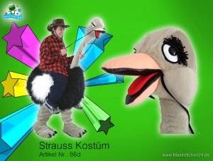Strauss-kostuem-86d