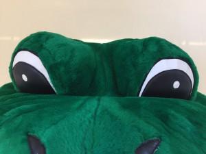 76a-Frosch-Kostuem