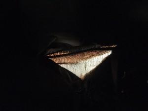 112b-Hahn-Maskottchen