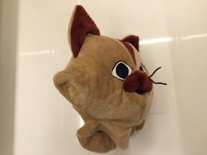 33p-Katzen-Kostüm