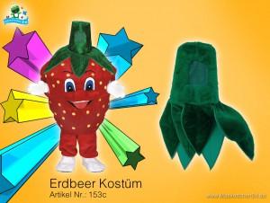 Erdbeer-kostuem-153c