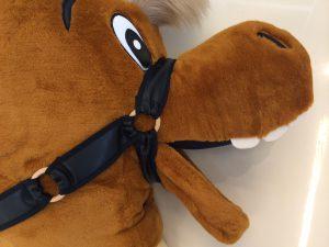 Pferd-Kostüme-99a