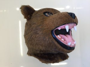 Grizzly-Bären-Kostüm