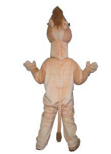 146b-kamel-hinten