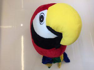 40a-papagei-kostu%cc%88m
