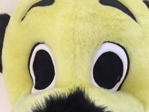 16p-Hund-Kostüm