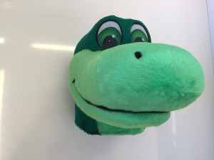 Krokodil-Kostueme-Maskottchen