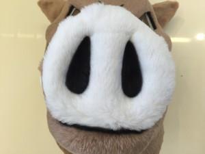 Wildschwein-Kostüme-Lauffigur