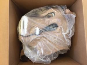 Wildschwein-Maskottchen-Kostüme
