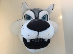 Wolf-Kostüm