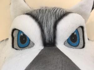 Wolf-Kostüme