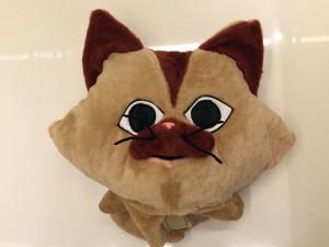33p-Katze