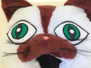 Katze-33p-Kostüme