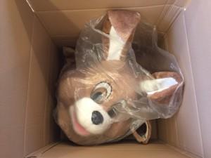 Osterhasen-Kostüme-Maskottchen