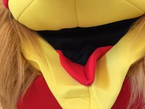 169b-Hahn-Huhn-Kostüme