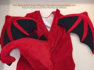 244c-Drache-Lauffiguren-Kostüm