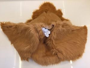 Hahn-169b-Huhn-Kostüme