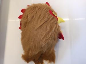 Hahn-Huhn-169b-Kostüme