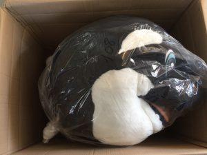 108b-Kostüme-Wal-Maskottchen
