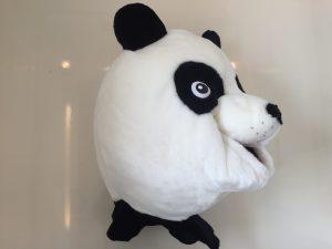 200b-Kostüm-Panda