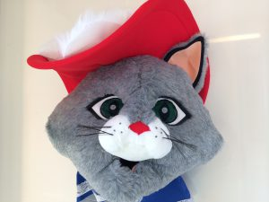 66a-Katzen-Kostüm