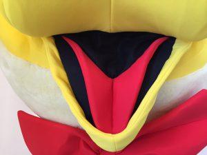 Enten-Kostüme-205b