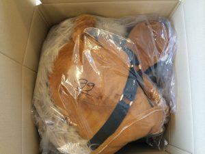 Versand-Kostüm-Maskottchen-Lauffigur-99a