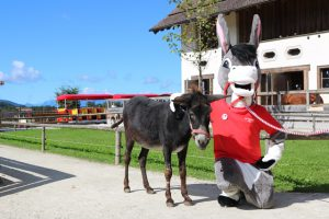 Esel-Kostüm