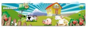 schwein-kostu%cc%88m-67a